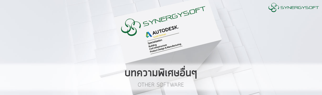 Synergysoft other article